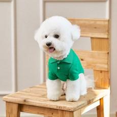 베니즈 클래식 카라 강아지 티셔츠