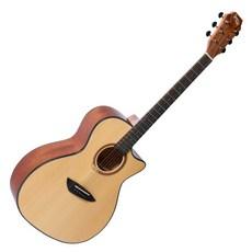 고퍼우드 어쿠스틱 기타, G230CE, Natural Satin