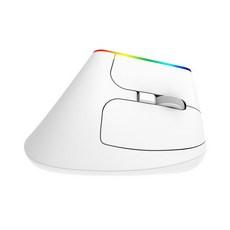 제닉스 저소음 무선 버티컬 마우스 STORMX VM2, 화이트