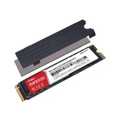 리뷰안 DRAM NVMe SSD, NX2300, 1TB
