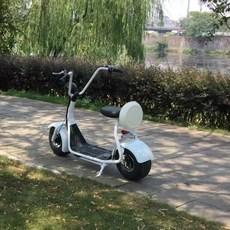 전기자전거 전기스쿠터 출퇴근용 전동스쿠터 전기자전거, 옵션1 옵션1