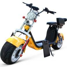 XBY전동스쿠터 전동자전거 할리전동오토바이, 와인색